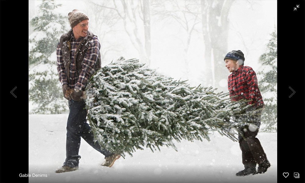 father, son and Christmas tree